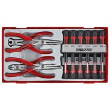 16 dalių Tiksliosios mechanikos atsuktuvų ir replių rinkinys Teng Tools TTMI16