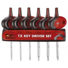 T - formos mini tiksliosios mechanikos atsuktuvai TX grioveliams rinkinys Teng Tools MDM706TXT
