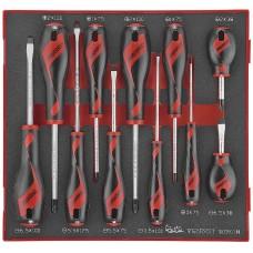 11 dalių atsuktuvų rinkinys. Teng Tools TED911N